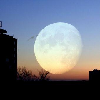 Měsíční sen