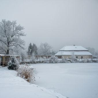 Ladovská zima u rybníka
