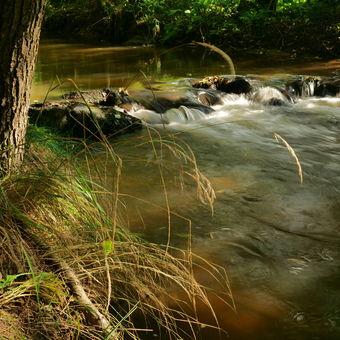Hejnický potok
