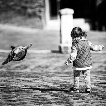 pojď se mnou létat...