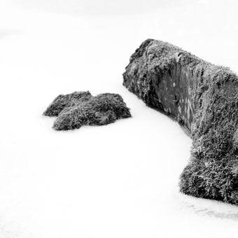 Ledové sevření