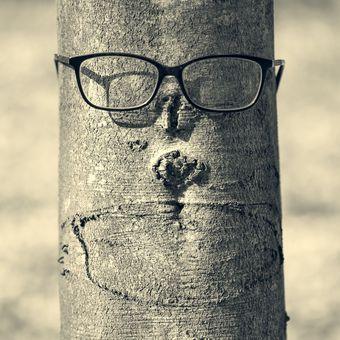 I stromy mají roušku