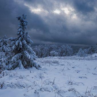 zimní podvečer na Šumavě
