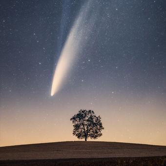 Kometa Neowise