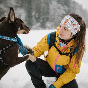 Zimní psí hrátky
