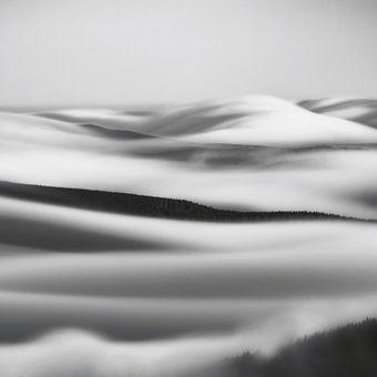 Vlny nad krajinou (BW)