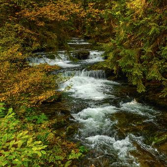 Mohelnický potok