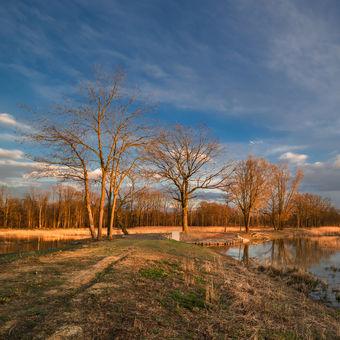 Pooderská rybníkovka