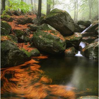Podzimní malování na Černém potoce.