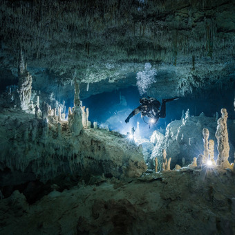 Kálovství krápníků v zatopené jeskyni Coop one - tunel upstream