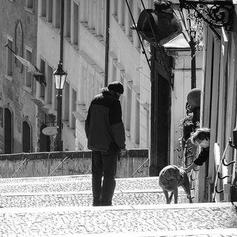 Praha v době virové VIII