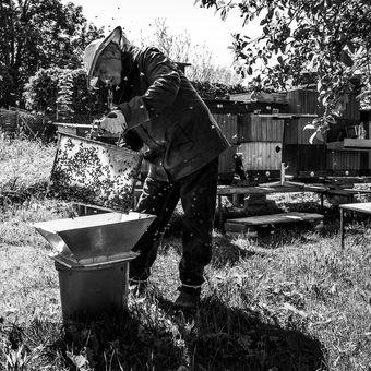 Ze života včelaře