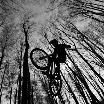 Lesní příprava