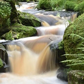 Filipohuťský potok po dešti
