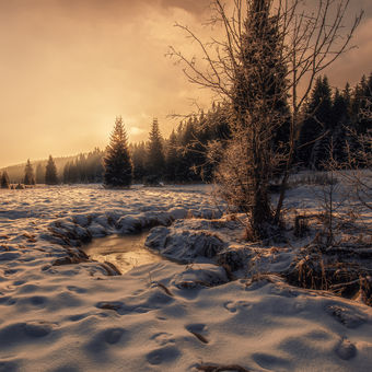 Údolí Světlých Hor