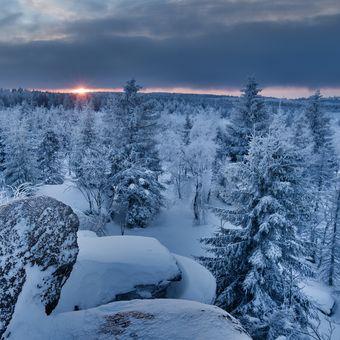 Zimomřivý východ