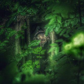 Někdo se dívá (Libeňský skřítek)