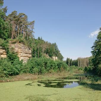 Černý rybník, hrad Kost, Český ráj