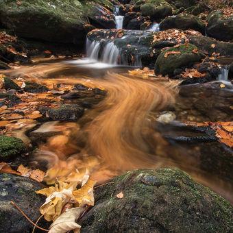 Křivky podzimu