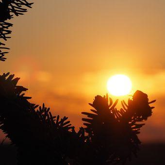 Při západu slunce