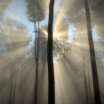 když slunce spřádá sny