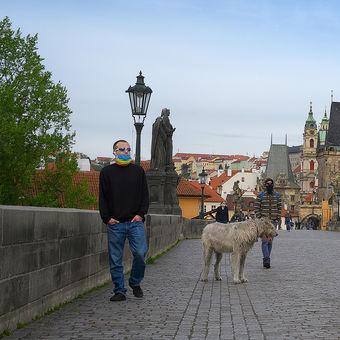 Praha v době virové X