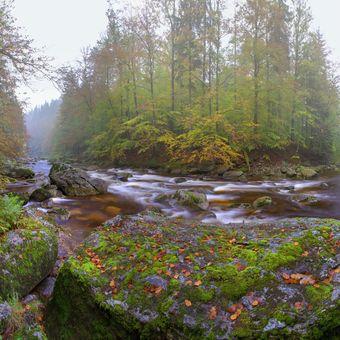 Podzimní malovaní na Jizeře