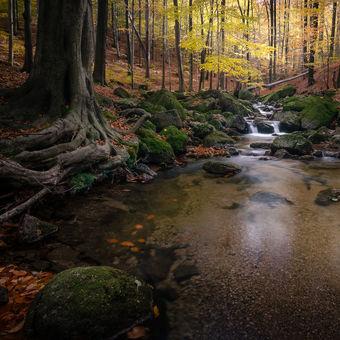 Podzimní relax