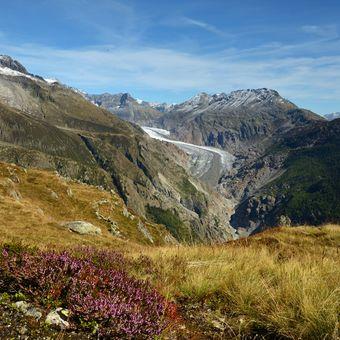 Aletschský ledovec -dolní splaz