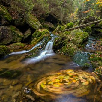 Bílý potok na Šumavě