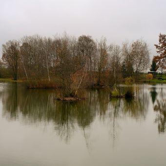 Podzim na rybníku II.