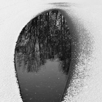 Lednová