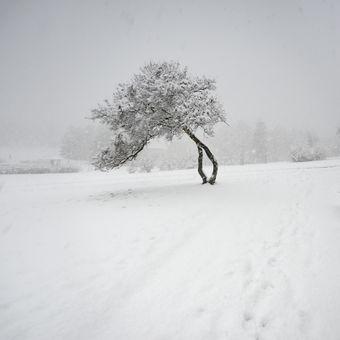 Zima na Monte Bú 2