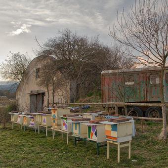 Hangár, včely a vétrieska