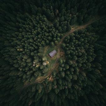 Lovecká chata v lese