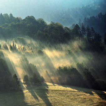 mlha v horách..