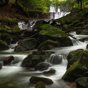 Na oblubenom potoku