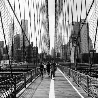 Linie NY