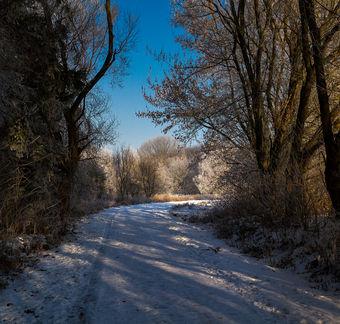 Zimní odpoledne.