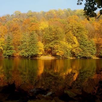 Podzimní odrazy