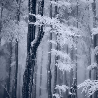 Zima na hřebeni