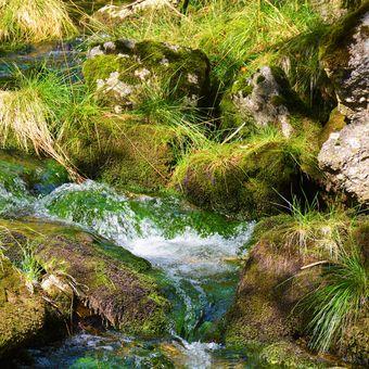 řeka kamenice jizerské hory