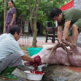 To je Vietnam
