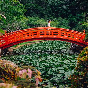 Zahrady Takayama Inari
