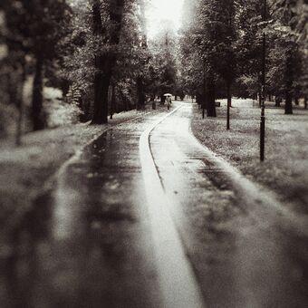 Deštivé Smetanovy sady