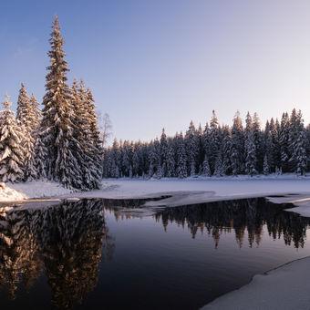 Sluneční hvězda nad zamrzlou krajinou