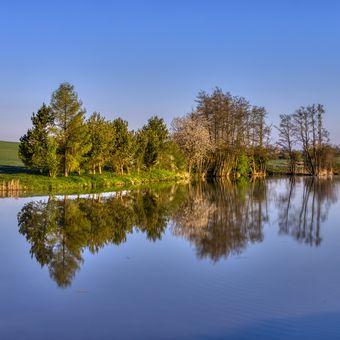 Pivovarský rybník u Dalešic