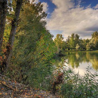 Na rybníku  III