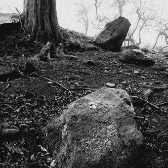 U kamenů I.