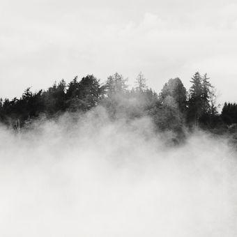 Za mlhou...